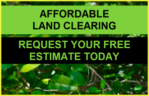 land clearing estimate